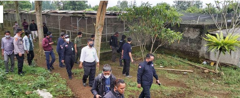 184 Satwa Dilindungi di Cicurug Sukabumi Jawa Barat, Disita Bareskrim Polri
