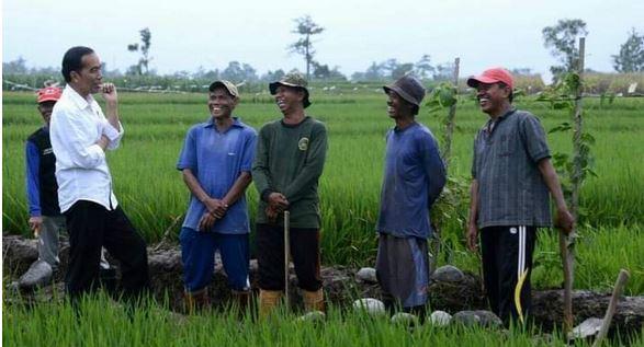 Jokowi Minta Pembangunan Pertanian Jadi Perhatian Bersama