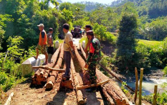 Jembatan Pohon Pinus Menopang Lalu-lintas Antar Desa di Bantarkawung, Brebes